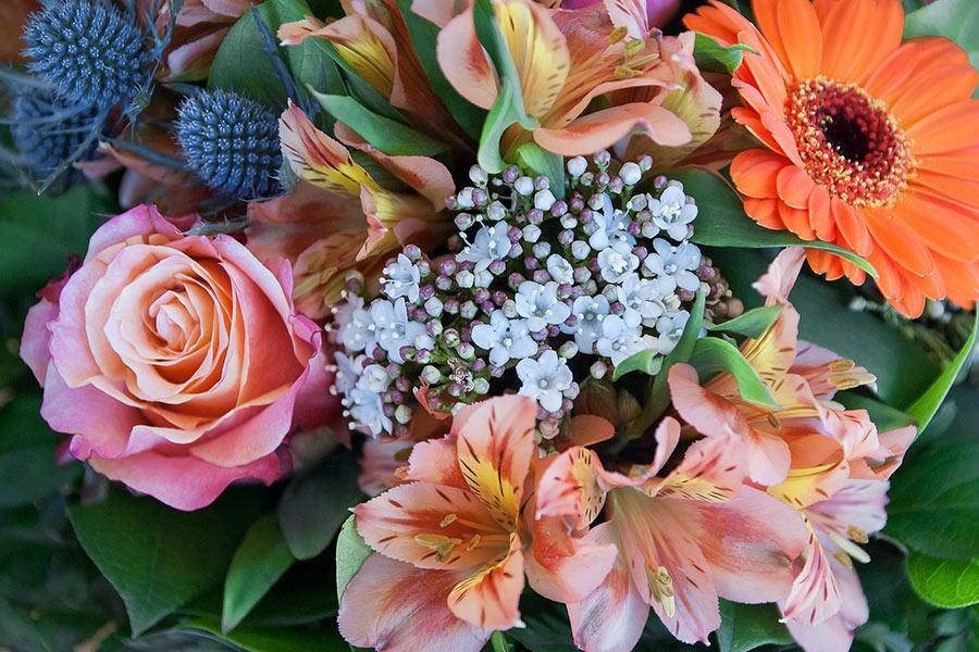 Blumen bei EDEKA Wittmann